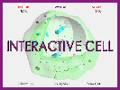 Interactive Cell